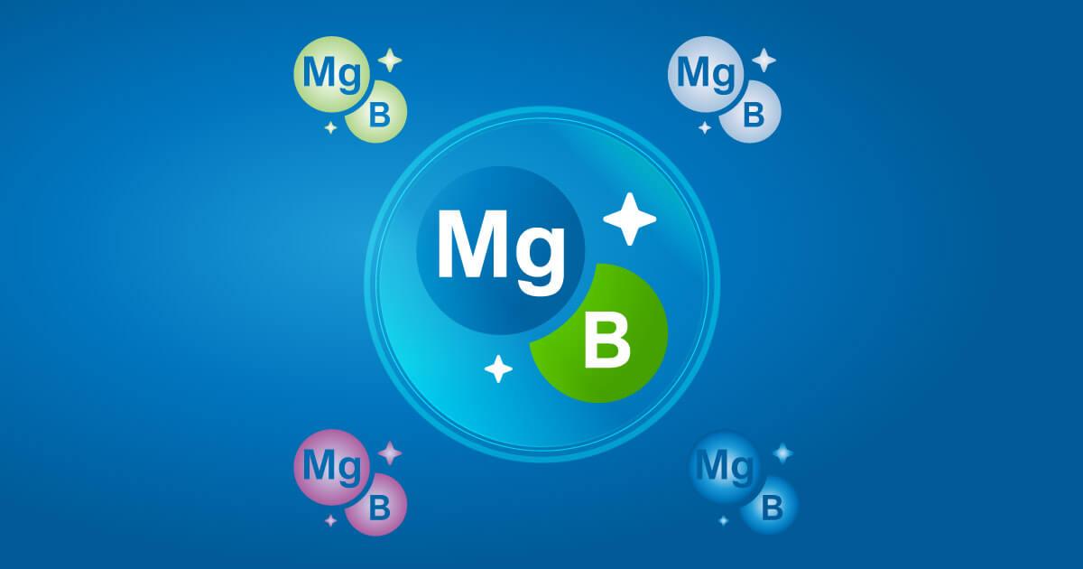 Kombinacija Vitamina B I Magnezijuma