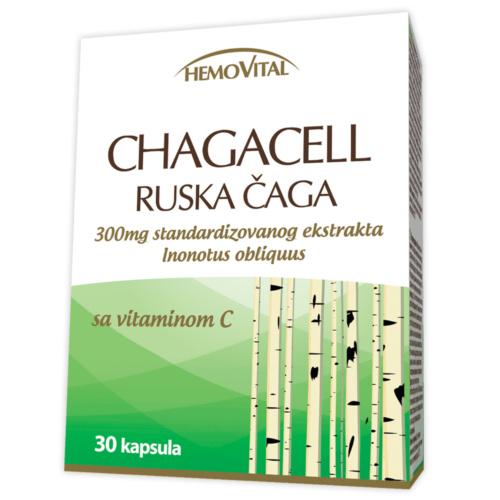 Russian Chaga mushroom capsules