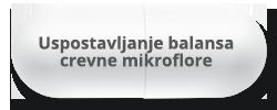 Uspostavljanje Balansa Crevne Mikroflore